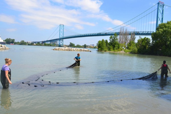 Students gather samples from the Detroit River along the shore west of the Ambassador Bridge.