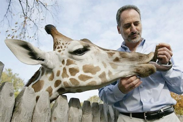 Ron Kagan feeding giraffe