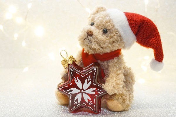 stuffed bear wearing Santa hat