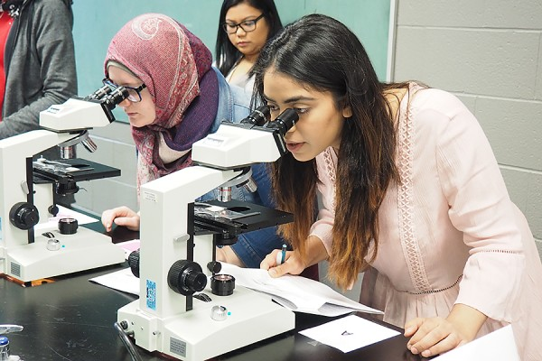 First-year biology students look into microscopes