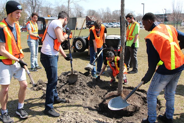 Student members of the University of Windsor Outdoors Club picked up shovels to help plant trees Thursday on the east side of Sunset Avenue south of University Avenue.