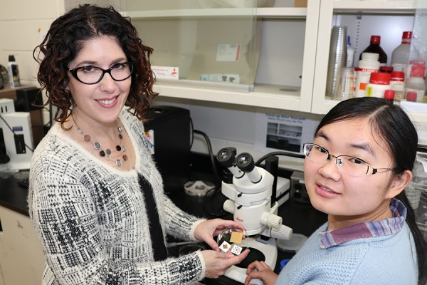 Tricia Carmichael and doctoral student Yunyun Wu